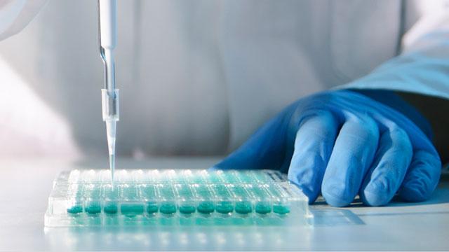 microplaca de laboratorio